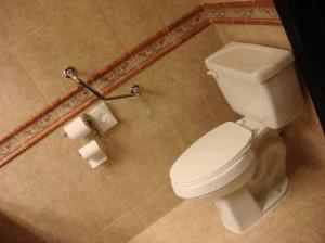 Toilet After Grab Bar Was Installed
