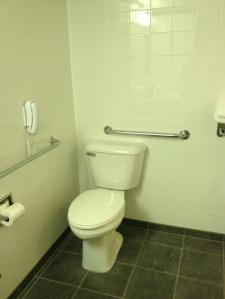 Raised Toilet With Grab Bars