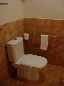Very Low Toilet with Grab Bar