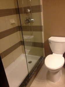 Shower and Toilet in Regular Room