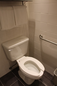 Toilet With Grab Bar