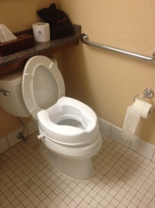 Toilet with Grab Bar and Raised Toilet Seat