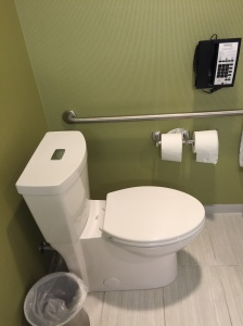 Toilet With Grab Bar and Phone