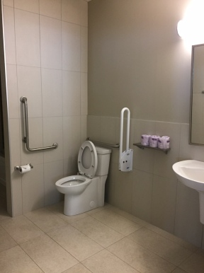 Raised Toilet Seat With Grab Bars